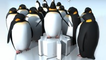 https://www.shmaryhu.co.il/wp-content/uploads/2012/07/google-penguin2-213x120.jpg