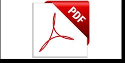 דוח PDF